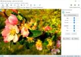 SoftOrbits Photo Editor: Quitar objetos no deseados